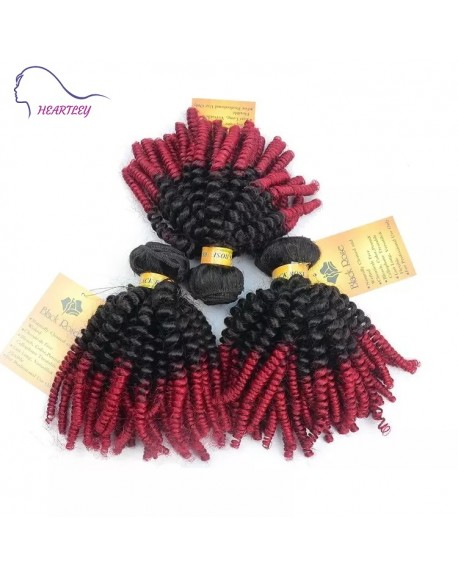 HEARTLEY Afro Kinky Curly Ombre Brazilian Remy Weaves 3 Bundles 1B/Burg Hair Extensions
