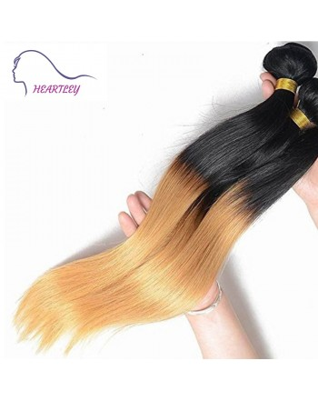 peruvian-ombre-straight-hair-extensions-d